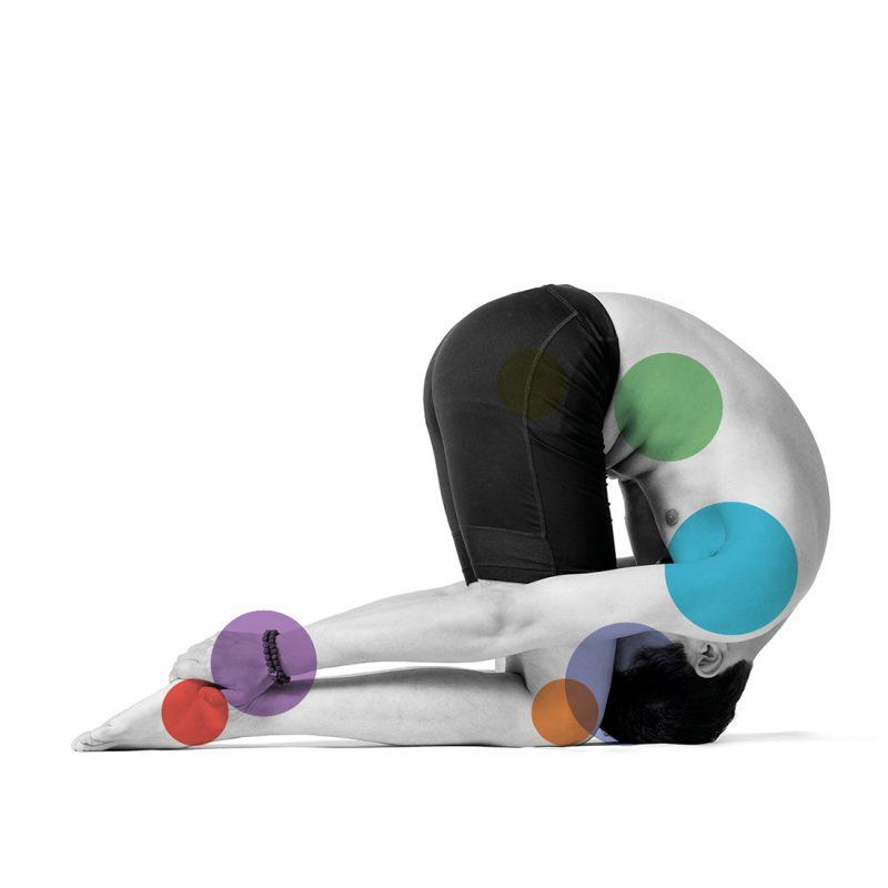 snailpose